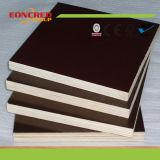 Brown y madera contrachapada concreta del encofrado del color negro