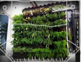 수직 정원 설치를 위한 살아있는 벽 재배자 부대