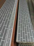 Los paneles de pared aislados grabados de la superficie de metal