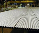 El cuadrado suave del carbón soldó el tubo galvanizado de /Steel del tubo de acero para el invernadero