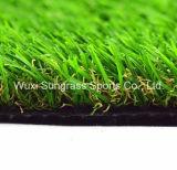 庭の芝生または人工的な芝生または総合的な芝生
