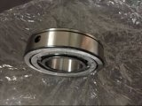 Zylinderförmiges Rollenlager des Link-Riemen-Verteiler-BS225560