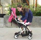 Großhandelsaluminiumlegierung-leichter Baby-Spaziergänger