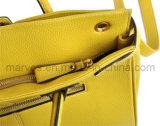 새로운 우연히 Fashionalble PU 가죽 여자 핸드백 (M10034)