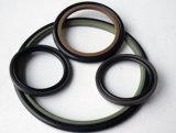 Verschiedener Größen-Polytetrafluoroäthylen Glyd Ring