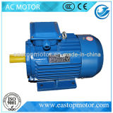 Cer anerkannte Y3 Wechselstrommotor-Leistungsfähigkeit für Pumpen mit Silikon-Stahl-Blatt Stator