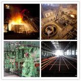 Buon Quality Carbon e Alloy Steel Bar