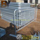 Recinzione provvisoria della maglia della barriera di controllo di folla della rete fissa del ferro della rete fissa di collegamento Chain