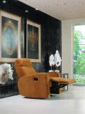 Mobilia di cuoio del sofà dell'Italia di svago (845)