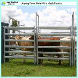 L'ovale convoglia caldo dei prodotti dei comitati del bestiame tuffato galvanizzato