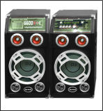 """L'orateur actif sans fil du double 10 """" a conçu professionnellement avec la batterie et le Bluetooth"""