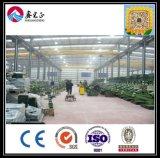 Entrepôt ou atelier en acier chinois de bâti de l'espace de grande envergure de qualité en Roumanie (BYSS122906)