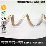 Luz de tira rígida subaquática IP68 de 144 diodos emissores de luz 5630 Ws2812