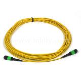 12 cordon de connexion de la fibre optique LSZH de sortance des faisceaux Om3 MPO LC