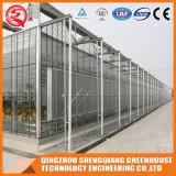 Het Groene Huis van het Polycarbonaat van de Profielen van het Aluminium van China Venlo