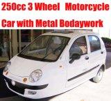3 عجلة درّاجة ناريّة ([سوتم250])