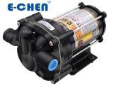 Wasser-Pumpe 800gpd 5.3lpm Handels-RO Ec40X