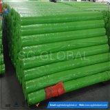 Encerado verde plástico del PE de China