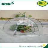 Serre chaude transparente pliable de PVC d'usine de jardin d'Onlylife