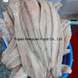 2000~3300g de bevroren Filet van de Haai van Vissen Zwarte