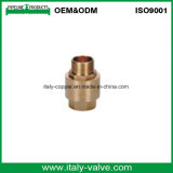 ISO9001 zugelassenes Messingsprung-Rückschlagventil (AV5001)