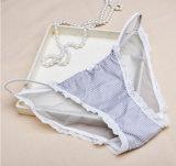 جديدة تصميم نساء ملبس داخليّ شبكة مزيج لون [بنتي] مثير