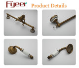 Grifo y columna de cobre antiguos de la ducha de Fyeer con la ducha de la mano y el plato de jabón