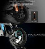 Elektrisches Fahrrad, Minifalz, Panasonic-Batterie, 500W Motor, städtische Mobilität