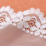 Cor branca e vestido bordado, feito malha das técnicas fazendo a tela do laço