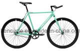 Singola bicicletta d'acciaio Ciao-Di tensione Sy-Fx70015 di Fixie di velocità