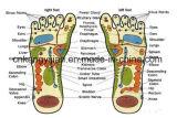 Massager vibrante del pie (CE certificado) (JYK-TBL-012A)