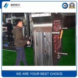 Beste Qualitätsplastikform für Autoteile/elektronische Bauelemente
