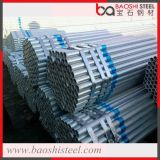 Il tubo d'acciaio galvanizzato/ha galvanizzato Steelpipe/tubo d'acciaio saldato galvanizzato