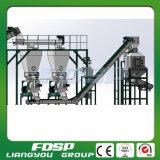 Chaîne de production de bonne qualité de boulette de la biomasse 2t/H de la Chine à vendre