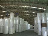 Weiß-Oberseite Kraftpapier-Zwischenlage-Vorstand (geeignet für das Verpacken der Lebensmittel)