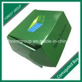 Venda por atacado lisa do molde da caixa de sapata (FP0200083)