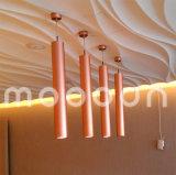 Indicatore luminoso di alluminio moderno del tubo di goccia di colore di rame LED per alloggiamento