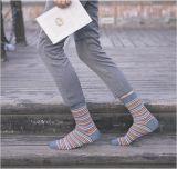 Изготовленный на заказ оптовые пинстрайпы человека элиты расчесывали носки хлопка