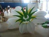 팽창식 LED 점화 당 훈장 꽃