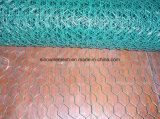 Compensation hexagonale galvanisée de volaille de maille
