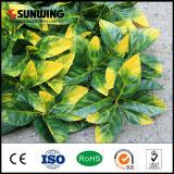Parete verde artificiale di plastica della nuova natura di disegno di Sunwing per il giardino