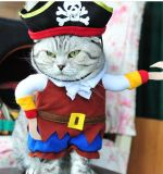 Vêtement d'animal familier de costume de pirate pour le crabot et le chat