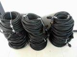 19pin Socapex Ausbruch-Kabel mit Edison-Verbindern