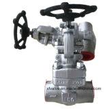 API602 a modifié le robinet d'arrêt sphérique de l'extrémité d'amorçage de l'acier inoxydable F304 TNP
