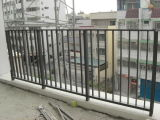 Подгонянный алюминиевые/алюминиевые сад и загородка плавательного бассеина