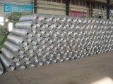 Rete metallica saldata galvanizzata del ferro