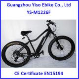 جبل كهربائيّة درّاجة دهن مع [26ينش] أطر من الصين [غنغدونغ]