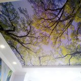 Film van het Dakraam van de Dekking van het Plafond van het Plafond van de Daling van de bosLuifel de Fluorescente Decoratieve