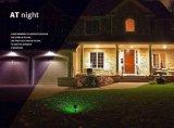 クリスマスの星の動きのレーザー光線(JG684)