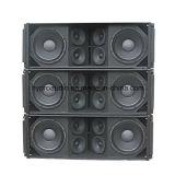 Ds212 Bidirectioneel van de Spreker van de Serie van de Lijn PRO Audio